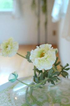 Boamesajul132007flower