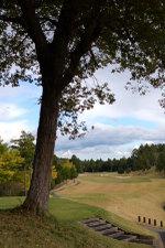 Golfcom1