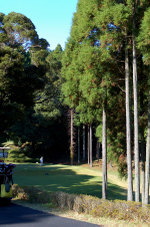 Golfcom3