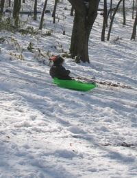 snowdog6